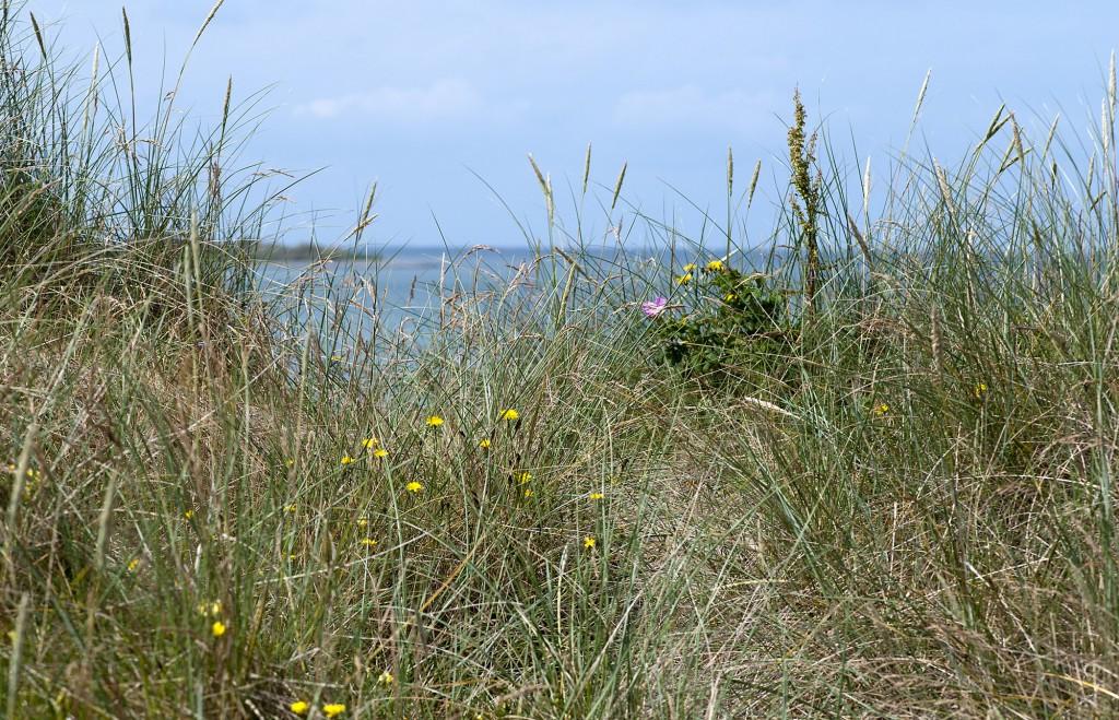 Geocaching Læsø