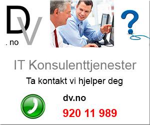IT Konsulent